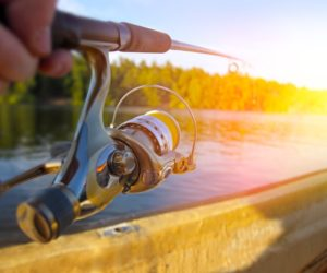 Exactly how to find the best fishing line!