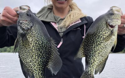Everything about the crappie spawn and why they turn black