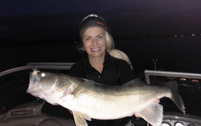 Giant Leech Lake Walleye