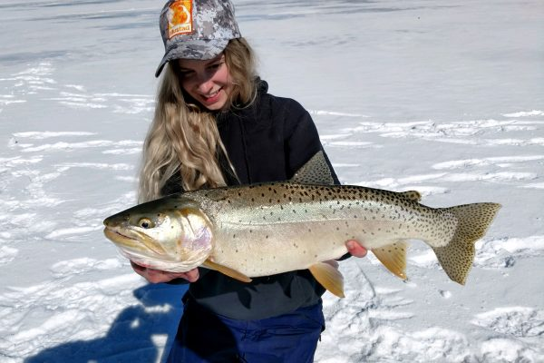 Ice Fishing Cutthroat Trout